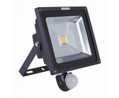 Biard Projecteur LED 50 Watts Avec Détecteur Pose Murale Extérieur