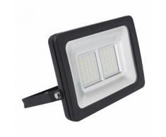 Biard Projecteur LED 50 Watts Luminaire Économique Extérieur Noir