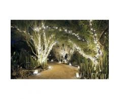 Guirlande solaire : 100 LED blanches / x1