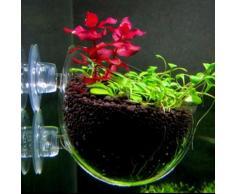 Nicrew – Mini Pot en verre cristal, cylindre de plantation en Pot d'eau Polka, décoration