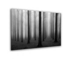 Tableau nature foggy weather Toile imprimée