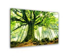Tableau nature l 'hêtre de ponthus Toile imprimée