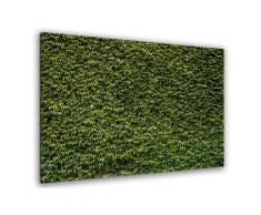 Tableau nature mur de lierres Toile imprimée