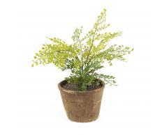 Plante fougère capillaire artificielle Zelena