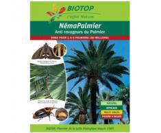 Nématodes charançon rouge du palmier - 50M : 2 à 6 palmiers50M : 2 à 6 palmiersBiotop