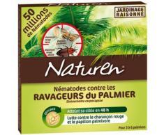 Nématodes charançon rouge et Papillon du palmier - 50M : 2 à 6 palmiers50M : 2 à 6