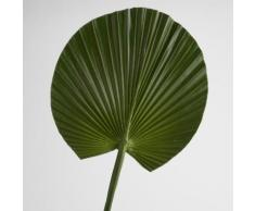 Feuille artificielle de palmier verte H.76cm NATURE