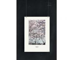 Poster 'Bloom Japan' be-poles blanc / ecru 100% papier en TU