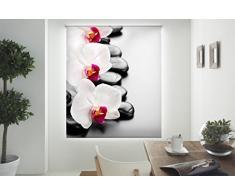Blindecor W-Z-81465 Store Enrouleur translucide à Impression numérique Multicolore 130x180cm