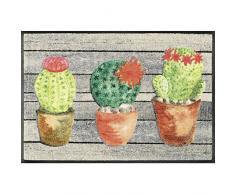 Wash+Dry Jardin de Cactus Tapis, Surface en Polyamide, Coloré, 80 x 150 cm