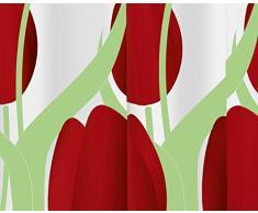 Gedy 6024774030 G-Olanda Rideau Blanc/Rouge/Vert 240 x 200