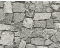 A.S. Création Papier peint Dekora Natur grisaille 10,05 m x 0,53 m 859525