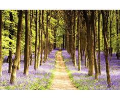 1art1® 63287 Forêts Poster Sentier de Lavande dans la Forêt 91 x 61 cm