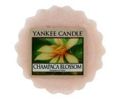 Yankee Candle 1302678E Tartelette Bougie Parfumée Campaca en Fleur Rose
