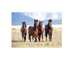 plenty gifts 51255 Napperon Horses, Plastic, Universel, Taille Unique
