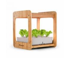 Blumfeldt Urban Bamboo Jardin hydroponique intérieur pour 12 plantes - culture facile en 25-40 jours - Lampe de croissance LED 24W - réservoir 7 litres - bambou véritable