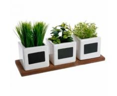 Paris Prix - Lot De 3 Plantes Artificielles herbes Aromatiques 34cm Blanc - Plantes artificielles