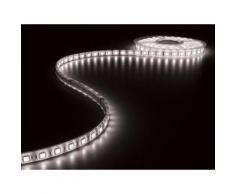 Flexible à led - blanc froid 6500k - 300 led - 5m - 24v velleman lq24w230cw65n - Appliques et spots