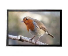 Oiseaux Paillasson Essuie-Pieds - Rouge-Gorge Sur Une Branche (40x60 cm) - Tapis et paillasson