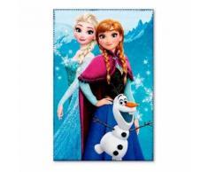Plaid polaire la Reine des Neiges couverture Frozen 1 - Textile séjour
