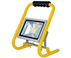 TRANSMEDIA LLS2L PROJECTEUR LED 230 V 20 W BLANC FROID - Ampoules et câbles