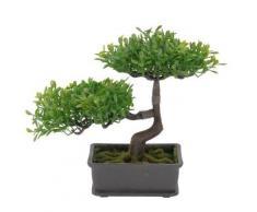 Bonsaï - Plante artificielle - Objet à poser