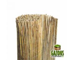 Canisse bambou entier naturel